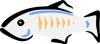 glassfish-logo